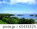 沖縄 西表島 夏の写真 45433525