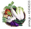 野菜 食材 ざるのイラスト 45436233