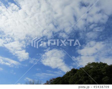 稲毛海浜公園の青い空に白い雲 45438709