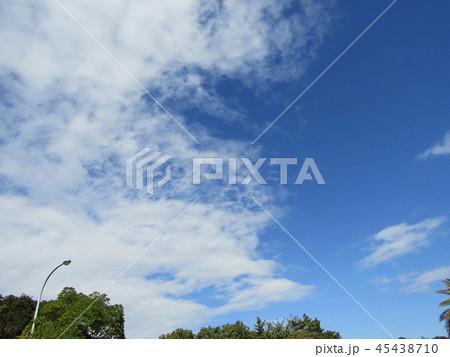 稲毛海浜公園の青い空に白い雲 45438710