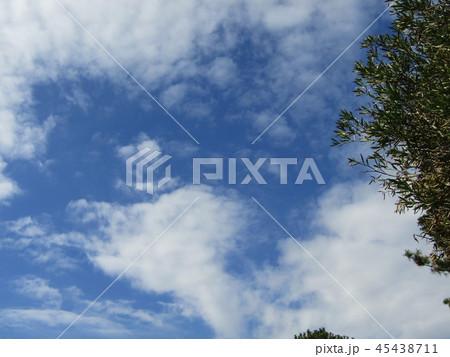 稲毛海浜公園の青い空に白い雲 45438711