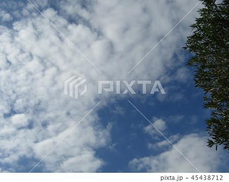 稲毛海浜公園の青い空に白い雲 45438712
