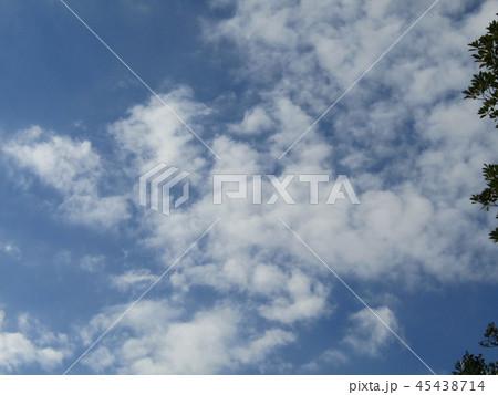 稲毛海浜公園の青い空に白い雲 45438714