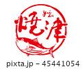 焼津 筆文字 鰹のイラスト 45441054
