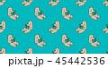 くま クマ 熊のイラスト 45442536