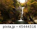 昇仙峡 仙娥滝 滝の写真 45444316