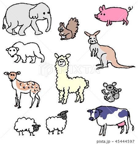 動物たち 45444597