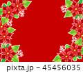 ポインセチア 植物 背景のイラスト 45456035