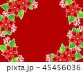 ポインセチア 植物 背景のイラスト 45456036