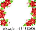 ポインセチア 植物 背景のイラスト 45456059