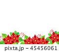ポインセチア 植物 背景のイラスト 45456061