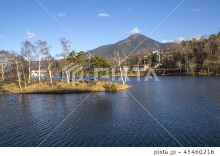 信州 長野県茅野市蓼科高原 晩秋の白樺湖と蓼科山の写真素材 45460216