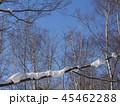 青空と木に積もった雪 45462288