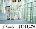 夫婦 歩く カップルの写真 45463170