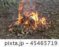 焚火 火 炎の写真 45465719