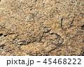 石のテクスチャ 45468222