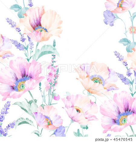 花 フラワー お花 45470545