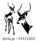 かもしか アンテロープ レイヨウのイラスト 45471905