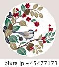 クリスマス 鳥 ベクターのイラスト 45477173