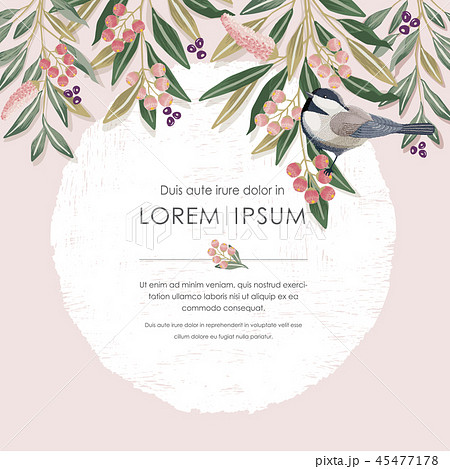 Vector illustration of floral frame with a bird 45477178