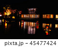 南湖公園 ライトアップ 45477424