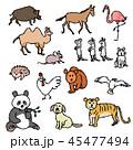 動物たち 45477494