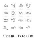 サカナ 魚 魚類のイラスト 45481146