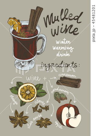 Vector sketch drawing set. Mulled wine ingredients. Mulled wine glass, orange slice, cotton 45481201