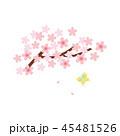 素材-桜と蝶 45481526