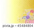 菊 花 植物のイラスト 45484804