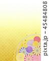 菊 花 植物のイラスト 45484808