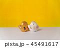 年賀状素材 置物 亥の写真 45491617