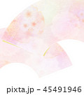 和柄 春 桜のイラスト 45491946