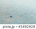 グラウンドにサッカーボール 45492928
