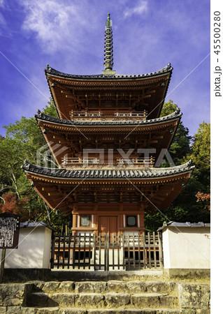 紅葉の井山宝福寺 45500280