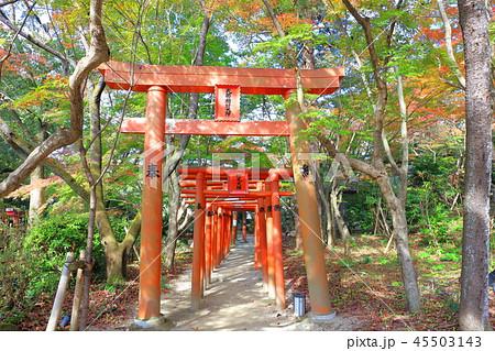 竈門神社(かまどじんじゃ) 福岡県太宰府市 45503143