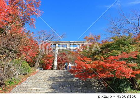竈門神社(かまどじんじゃ) 福岡県太宰府市 45503150