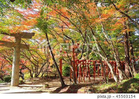 竈門神社(かまどじんじゃ) 福岡県太宰府市 45503154