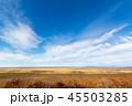 晩秋 釧路湿原 湿原の写真 45503285
