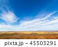晩秋 釧路湿原 湿原の写真 45503291