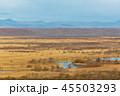 晩秋 釧路湿原 湿原の写真 45503293
