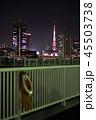 夜 カップル 都会の写真 45503738