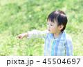指さす子ども 45504697