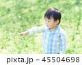 指さす子ども 45504698