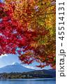 富士山 紅葉 秋の写真 45514131