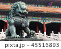北京 獅子 ブロンズの写真 45516893