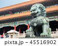 中国 北京 獅子の写真 45516902