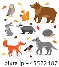 動物 くま クマのイラスト 45522487