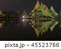 兼六園 ライトアップ 紅葉の写真 45523766