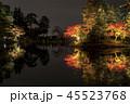 兼六園 ライトアップ 紅葉の写真 45523768